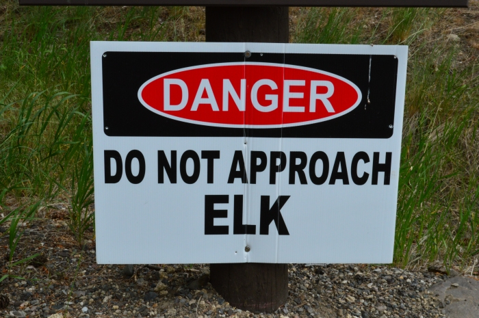 Elk Warning