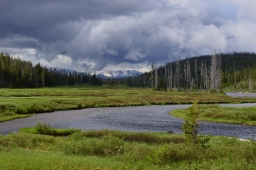 Grand Tetons and Yellowstone – in 2 days!