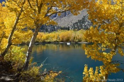 Fall Colors on Convict Lake