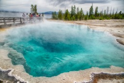Yellowstone – Geysers, Tours, and Bears!