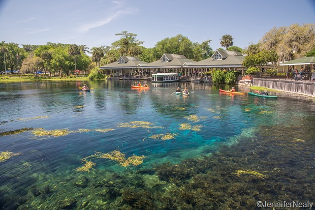Commit error. glass bottom boat tours st augustine topic The